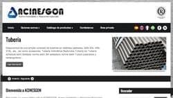 Web ACINESGON- www.acinesgon.com